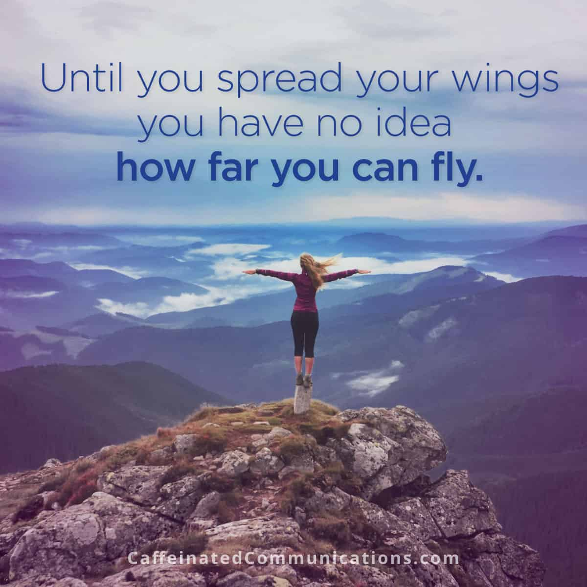visual content - spread your wings